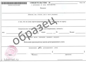 Бланк свидетельства о временной регистрации