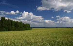 Купля продажа земель сельхозназначения