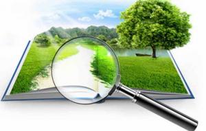 ФЗ 135 об оценочной деятельности: история создания, особенности, нюансы