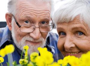 Какие налоги не платят пенсионеры: привилегии на старости лет