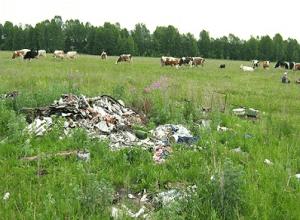 Что входит в понятие и состав земельного правонарушения: его виды и категории