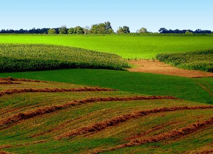 Отчуждение земельного участка: коротко о важном