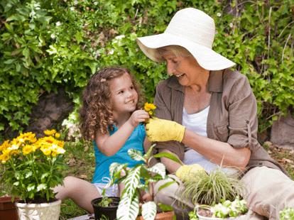 Можно ли оформить декретный отпуск для бабушки