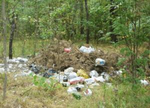 Кто спасет леса от мусора