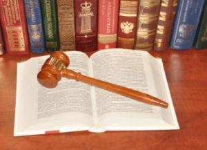 Статья 113 УПК РФ