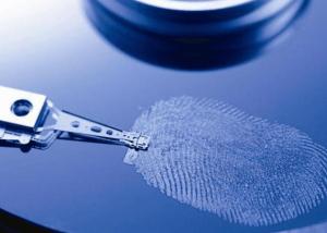 Идентификация по отпечаткам пальцев