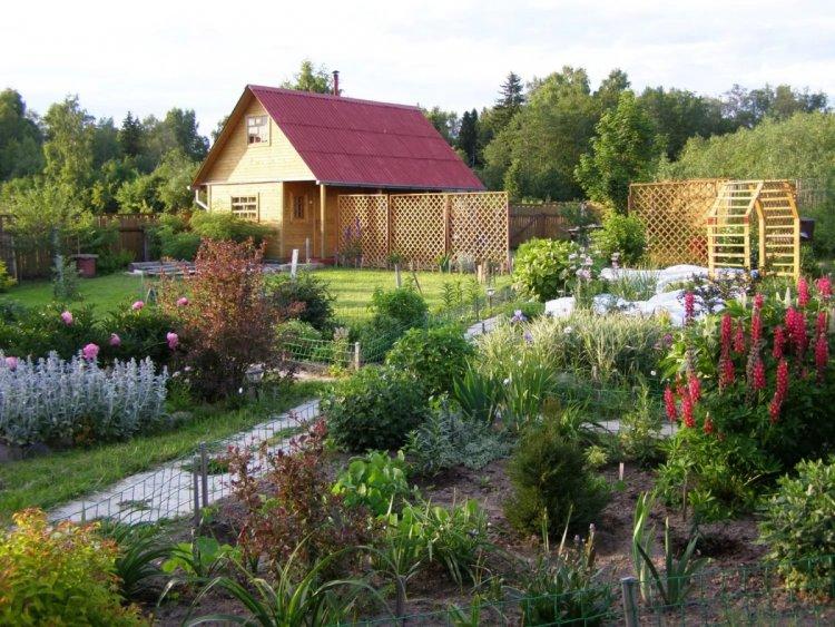 Участок в садоводстве