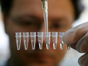 ДНК-экспертиза