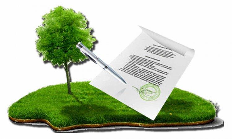 Предоставление земельных наделов