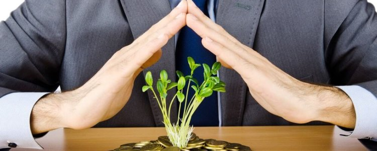 Получение кредита на развитие бизнеса: этапы оформления