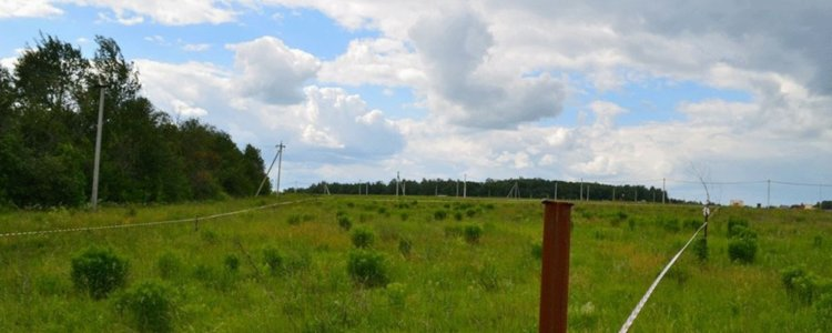 Срочно продать земельный участок: куда обратится и как составить договор
