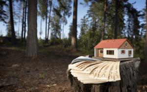 Экспертиза в сфере земельного права