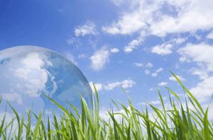 Экологические преступления пагубны для планеты