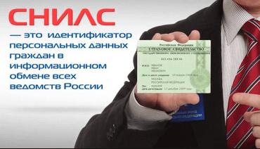 Как восстановить пенсионное страховое свидетельство в России