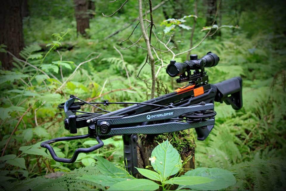 Нужно ли разрешение на арбалет по закону РФ Об оружии