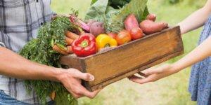Натуральные овощи из рук в руки