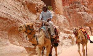 Работа в иордании
